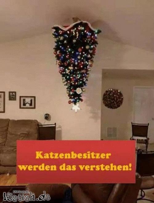 weihnachtsbaum bild. Black Bedroom Furniture Sets. Home Design Ideas