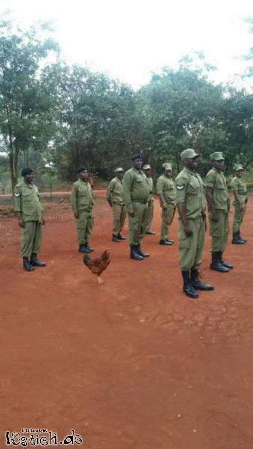 Tierischer Soldat