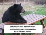 Mieser Service