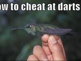 Vogel-Darts