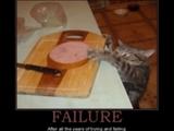 Eine Raub Katze