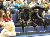 Außerirdische Zuschauer
