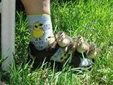 Sockenküken