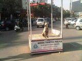 Wachposten in Indien