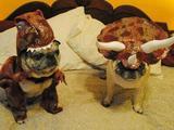 Dinomöpse