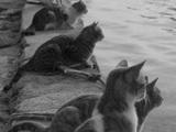 Auf die Rückkehr der Fischer warten