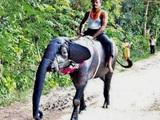 Merkwürdiger Elefant