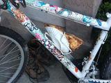 Essen transportieren