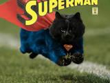 Süße Supercat