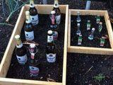 Biergarten und Kräutergarten