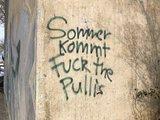 Fuck the Pullis