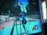 Hund spielt Wii
