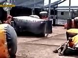 Hüpfsack Fail