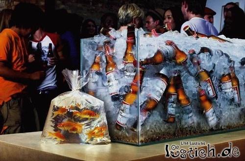 Bier kühlen