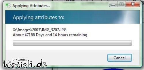 Windows Vista die Zukunft?
