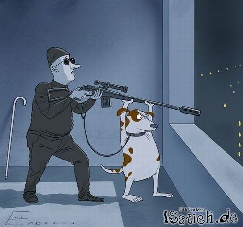 Blindenhund hilft bei der Arbeit