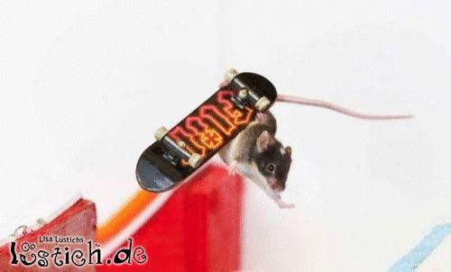 Skateboard-profi