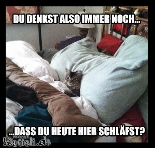 Das ist mein Bett