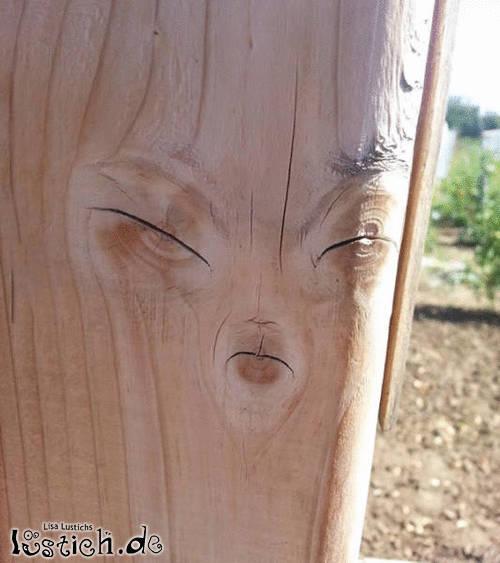 Meisterliches Holz