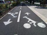 Giraffen auf Fahrrädern