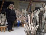 Fischverkäufer
