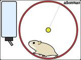 Spiel mit dem Hamster