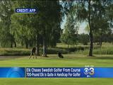 Elch gegen Golfer